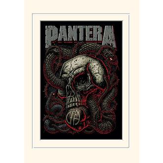 Pantera Poszter - (&&string0&&) - PYRAMID POSTERS, PYRAMID POSTERS, Pantera