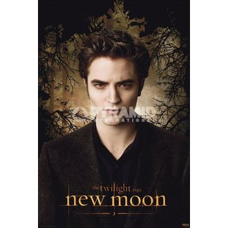 poszter Twilight - New Moon (Edward Trees) - PYRAMID POSTERS, TWILIGHT