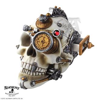 dekoráció Alchemy Gótikus - Erasmus Darwin´s Steam-Cerebrum Skull, ALCHEMY GOTHIC