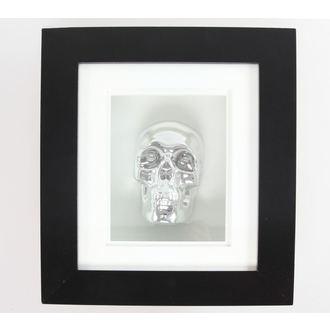 kép Silver Skull In Frame