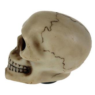 Skull Gear dekoráció (váltófej borítás), NNM