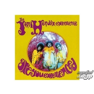 bábu (3D kép) JIMI HENDRIX are you experienced plaque Figure, NNM, Jimi Hendrix