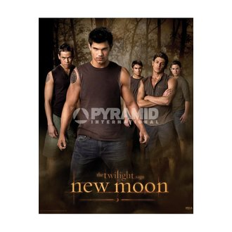 poszter Twilight - New Moon (Wolf Pack) - MPP50303, TWILIGHT