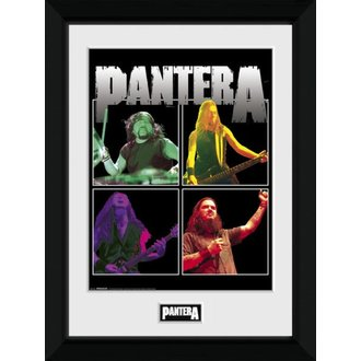 Pantera Poszter (bekeretezett) - GB posters, GB posters, Pantera