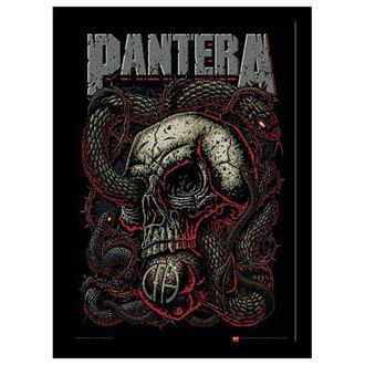 Pantera Keretezett poszter - Snake Eye - PYRAMID POSTERS, PYRAMID POSTERS, Pantera