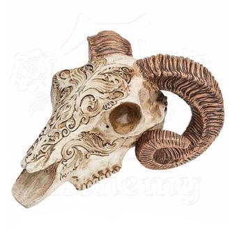 ALCHEMY GOTHIC Dekoráció - Skrimshaw Ram Skull, ALCHEMY GOTHIC